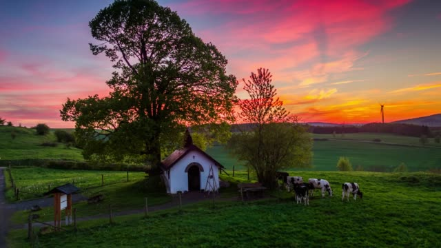 Idyllic Rural landscape with lonely tree under sunset sky