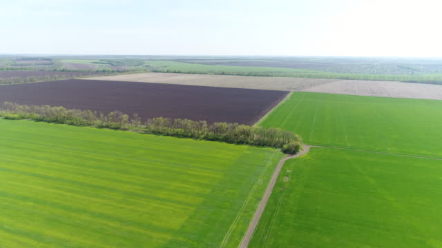 idyllic rural view of gently rolling patchwork farmland - patchwork stock videos & royalty-free footage