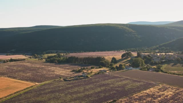 idyllic shot of landscape during summer - patchwork landscape stock videos and b-roll footage