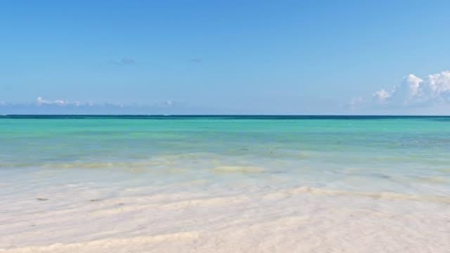 vidéos et rushes de paradis tropical idyllique dans la mer des caraïbes - sable
