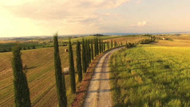 veduta aerea idilliaca campagna toscana - collina video stock e b–roll