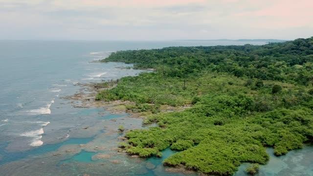 vidéos et rushes de vue idyllique sur les îles tropicales. océan bleu et jungle verte. vue aérienne - république du panama