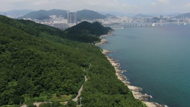 igidae urban nature park / nam-gu, busan, south korea - 散歩道点の映像素材/bロール