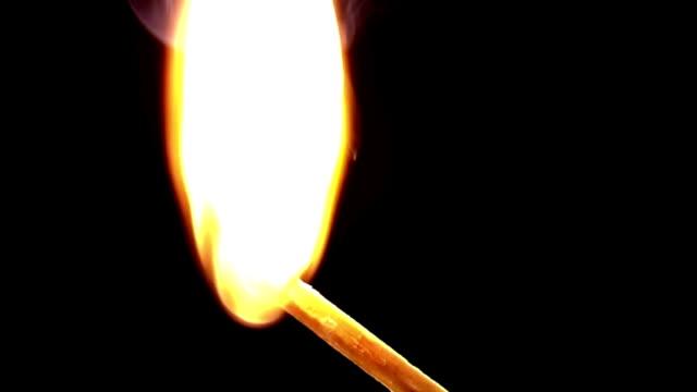 vídeos y material grabado en eventos de stock de incineración fósforo - fosforo