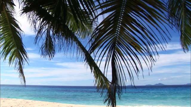 ws pan ile fregate beach, seychelles - idyllic stock videos & royalty-free footage