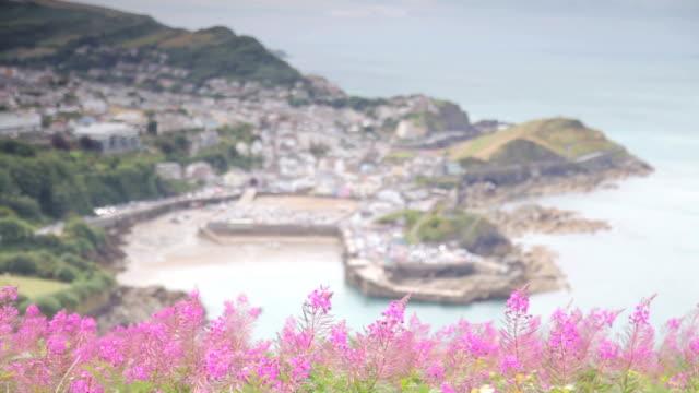 ilfracombe, seaside town, devon england - devon stock videos and b-roll footage