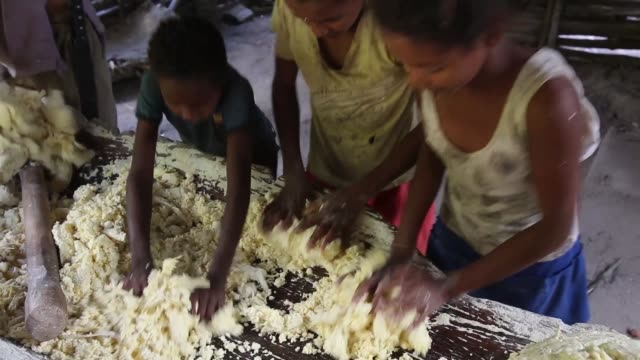 vídeos de stock, filmes e b-roll de illegal logging in the province of maranhão has a massive impact on the traditional lives of the quilombo communities who had been living sustainably... - comida e bebida