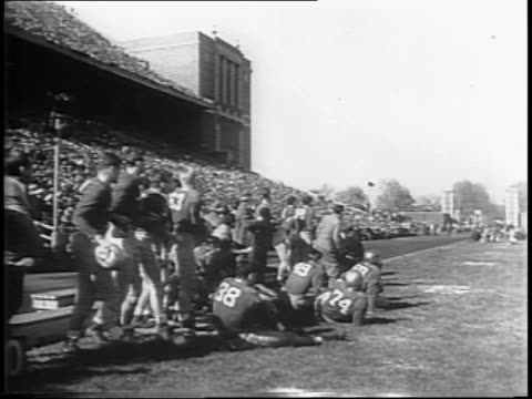 illini cheerleaders at football game / notre dame recovers a fumble / notre dame quarterback frank danciewicz throws over the middle to william f... - anno 1944 video stock e b–roll