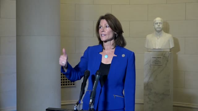 Illinois Congresswoman Cheri Bustos says after her election to lead the Democratic Congressional Campaign Committee that with Democrats in the house...