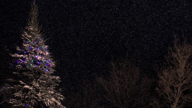 4K Illuminated Christmas Tree at Night During Snowstorm