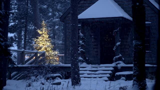 stockvideo's en b-roll-footage met illuminated outdoor christmas tree, on snowy evening. - cadeau
