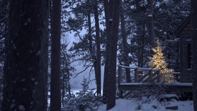 illuminated outdoor christmas tree, on snowy evening. - anticipation stock videos & royalty-free footage