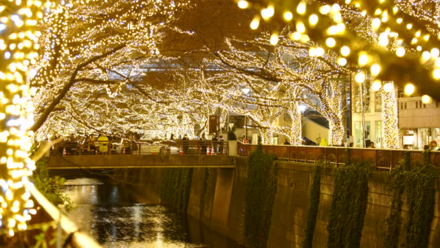 illuminated rows of cherry trees surround the meguro river during the christmas season at night, which millions of led lights reflect to river from both side of riverbank at meguro tokyo japan on december 20 2017. - turning on or off点の映像素材/bロール