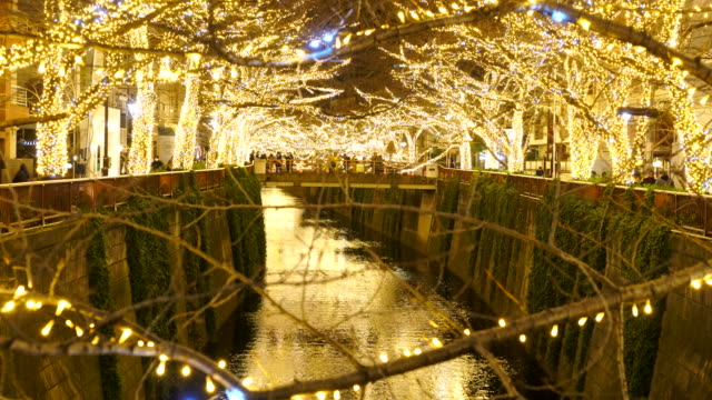 illuminated rows of cherry trees surround the meguro river during the christmas season at night, which millions of led lights reflect to river from both side of riverbank at meguro tokyo japan on december 20 2017. - 運河点の映像素材/bロール
