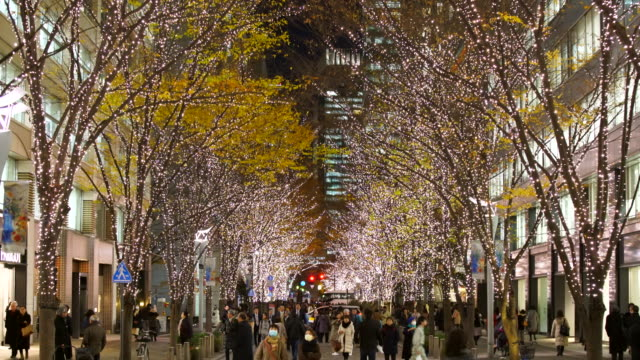 Illuminated rows of trees stand along Marunouchi Naka-Dori Street for Christmas season, which street is surrounded by many shops and boutiques in high-rise Office Buildings at Marunouchi Chiyoda Tokyo Japan on December 12 2017.