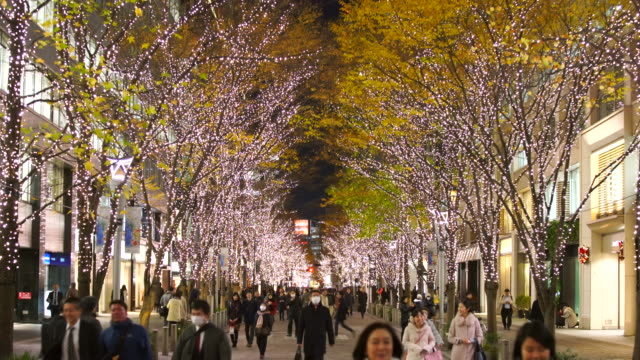 illuminated rows of trees stand along marunouchi naka-dori street for christmas season, which street is surrounded by many shops and boutiques in high-rise office buildings at marunouchi chiyoda tokyo japan on december 12 2017. - marunouchi stock videos & royalty-free footage
