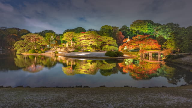 illuminated trees in rikugien gardens, wide timelapse - satoyama scenery stock videos and b-roll footage