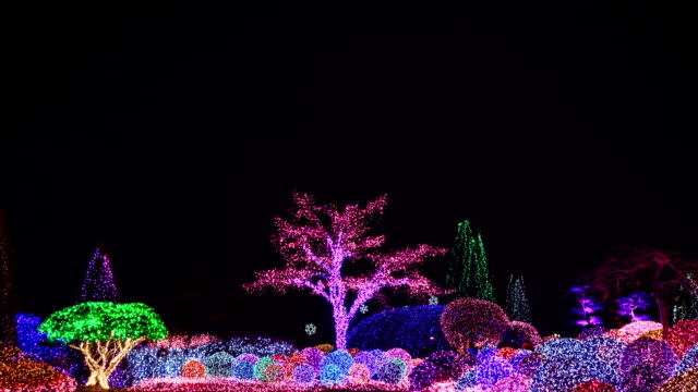 illuminated view of the garden of morningcalm(local landmark) covered with electric lights at night - local landmark stock videos and b-roll footage