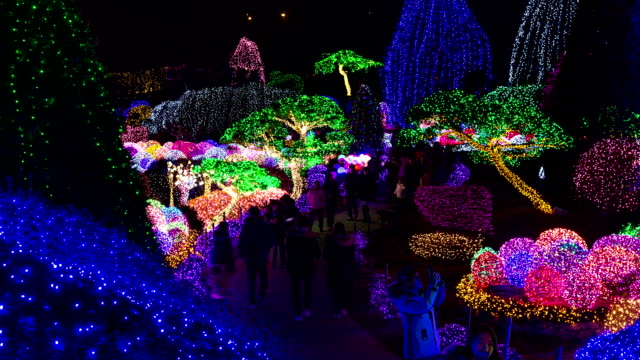 illuminated view of the garden of morningcalm(local landmark) covered with electric lights and large group of people at night - local landmark stock videos and b-roll footage