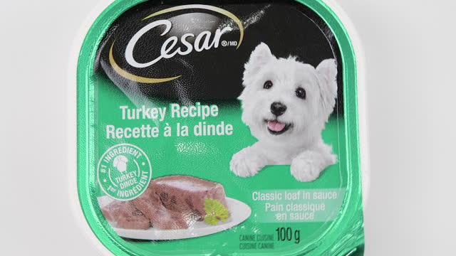illustrative editorial of a can of cesar branded dog food with a turkey recipe on march 18, 2021; in toronto, ontario canada, - editorial stock-videos und b-roll-filmmaterial