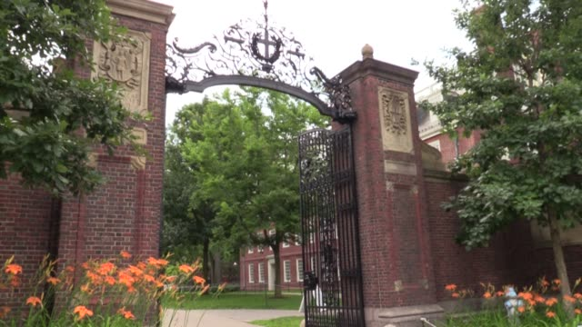 images of harvard university in cambridge, massachusetts, which has decided to sue the trump administration after it threatened to revoke the visas... - harvard university stock videos & royalty-free footage