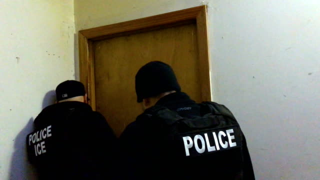 us immigration and customs enforcement officers try to locate a wanted undocumented mexican immigrant at his bushwick apartment before arresting him... - festnahme stock-videos und b-roll-filmmaterial