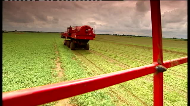 impact of wet weather on farming england lincolnshire ext **good shots of harvesting** shot of harvester harvesting peas in field tracking shot of... - fen stock videos and b-roll footage