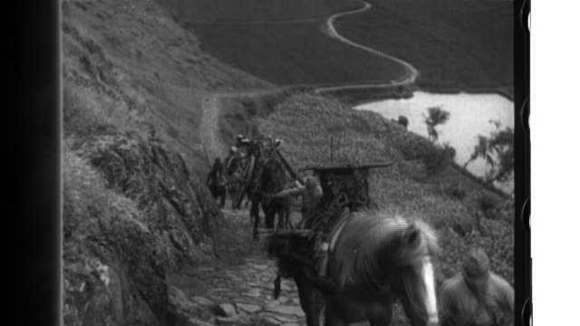 imperial japanese army soldiers use pack horses to transport artillery in mountains and then use the assembled howitzers to shell the enemy before... - freizeitreiten stock-videos und b-roll-filmmaterial