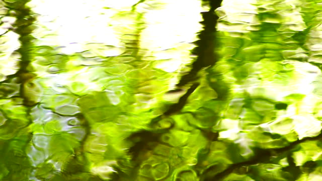 impressionist surface water