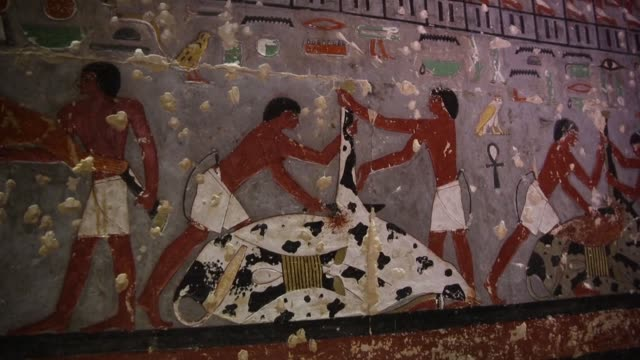 in a major archaeological discovery egypt on saturday unveiled the tomb of a fifth dynasty official adorned with colourful reliefs and well preserved... - archaeology stock videos & royalty-free footage