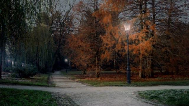 4 stagioni in un parco cittadino - stagione video stock e b–roll