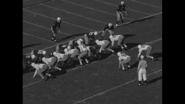 in action on field in yale bowl, colgate raiders run ball / shot of crowd in stands / colgate completes long pass / colgate runs for short yardage... - colgate university stock videos & royalty-free footage