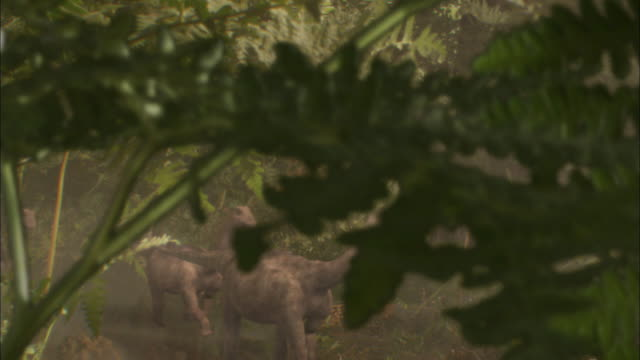 in an animation, baby brontosauruses walk through a forest. - extinct stock videos & royalty-free footage