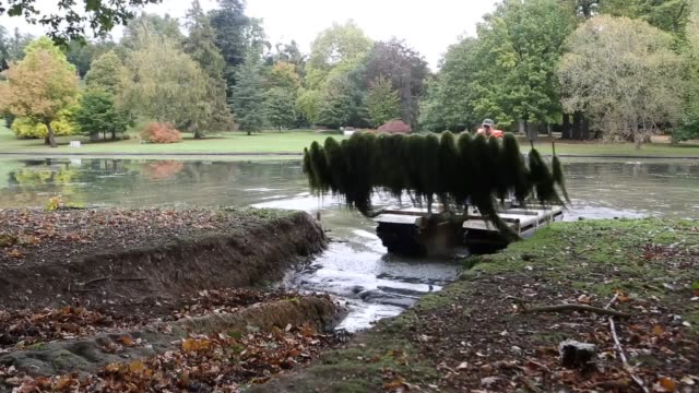 vídeos y material grabado en eventos de stock de in an extreme case of weeding amphibious tractors are this week tackling almost 16 tonnes of invasive weed in the lake at the national trust's... - arrancar malas hierbas