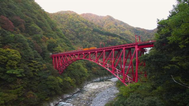 秋の季節に、富山県の黒部峡谷鉄道。 - 峡谷点の映像素材/bロール