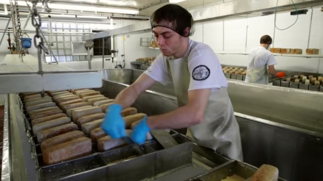 in keeping with tradition, justin koch places bricks on brick cheese forms to help press out whey and make blocks of the cheese at the widmer's... - siero video stock e b–roll