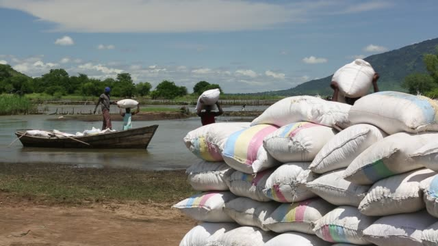 in mid january 2015, a three day period of excessive rain brought unprecedneted floods to the small poor african country of malawi. it displaced nearly quarter of a million people, devastated 64,000 hectares of land, and killed several hundred people. this - wohltätigkeit und humanitäre hilfe stock-videos und b-roll-filmmaterial