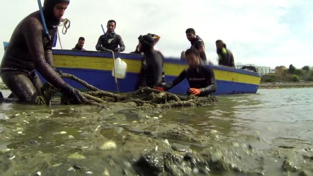 stockvideo's en b-roll-footage met in morocco's sale a local ngo invites volunteer divers to clean up the seabed of the marina - sale