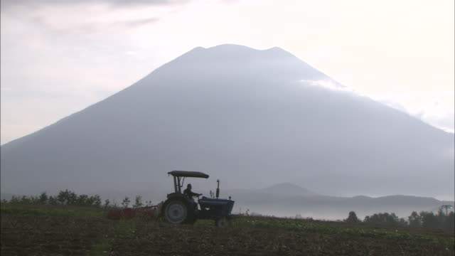 in niseko-cho, with mt.yotei for background, potato harvesting by tractors being in operation. medium long shot. potato. harvest season. agriculture.... - 1898 stock videos & royalty-free footage