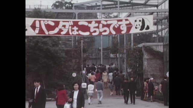 in october in preparation for the first exhibition of giant pandas in japan ueno zoo set up a banner at the entrance - パンダ点の映像素材/bロール