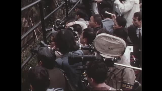 in october many press cameramen shot first-ever exhibit of giant pandas in japan. - パンダ点の映像素材/bロール