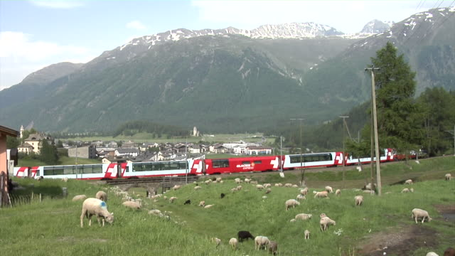 in summer a glacier express is crossing the olympia bobrun st. moritz-celerina - dorf stock-videos und b-roll-filmmaterial