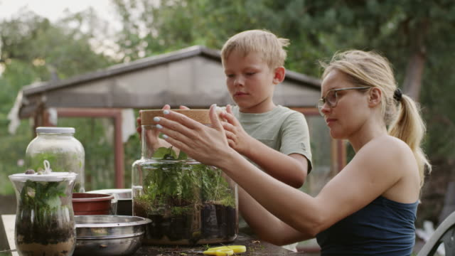 diy in the garden. mother and son - diy stock videos and b-roll footage