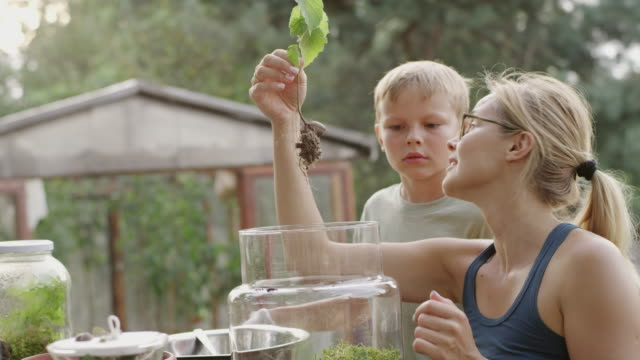 diy in the garden. mother and son - diy stock videos & royalty-free footage