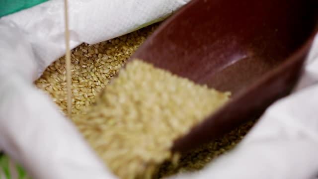 vídeos de stock, filmes e b-roll de a mercearia. tirando unpolished rodada arroz de saco - brincadeira de pegar