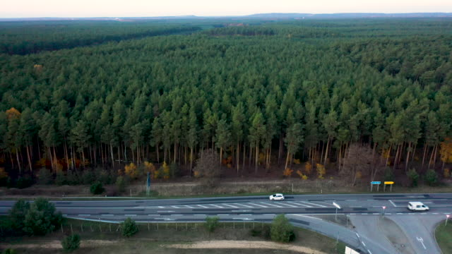 in this aerial view a stretch of forest that will make way for the newly-announced tesla gigafactory stands at freienbrink on november 14, 2019 in... - brandenburg state stock videos & royalty-free footage
