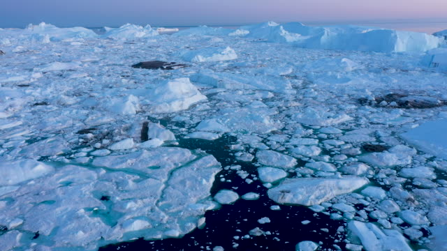 in this aerial view icebergs and ice float jammed into the ilulissat icefjord on august 04 2019 near ilulissat greenland the sahara heat wave that... - berg stock videos & royalty-free footage