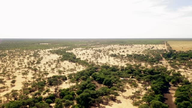 vidéos et rushes de in this aerial view the hamakari farm, which is run by a family of german origin and which stands next to waterberg plateau can be seen in... - plateau caractéristiques de la terre