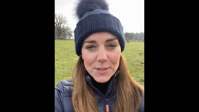 in this handout video supplied by kensington palace and released on january 31, catherine, duchess of cambridge, patron of place2be, records a... - editorial stock videos & royalty-free footage