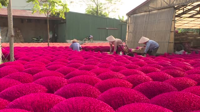 in vietnam's incense village hundreds of workers are busy dyeing drying and whittling down bamboo barks to make the fragrant sticks ahead of the busy... - räucherwerk stock-videos und b-roll-filmmaterial